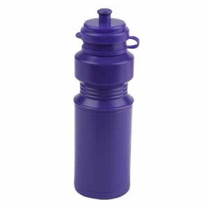 250ml LUNCHBOXER Drinks Bottle