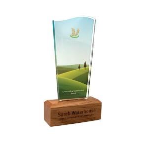 Oak Base Acrylic Award