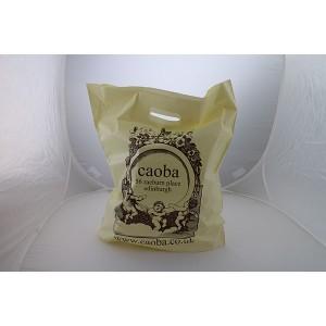 200g Sugar Cane/Green Polyethylene Carrier Bag