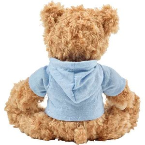 Teddy Bear with Hoodie